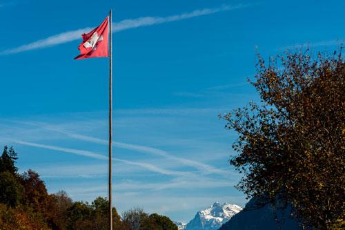Foto zum Thema Coaching für Expats | Elisabeth Mlasko | Zürich